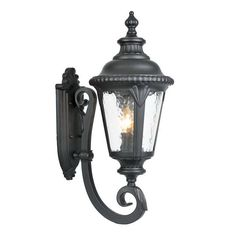 Acclaim Lighting Surrey 24.5-in H Matte Black Outdoor Wall Light