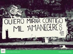Acción poética Quito
