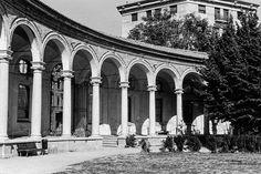 Dalla Rotonda della Besana uno scatto su pellicola di Marco Sosio #milanodavedere  Another great place in Milan: Rotonda della Besana Milano da Vedere