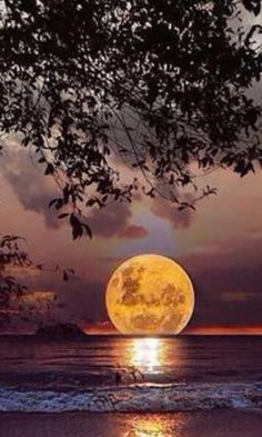 @Shadowrun1977 Good evening to you, my dear always thank and tomorrow the sun of a new Good night