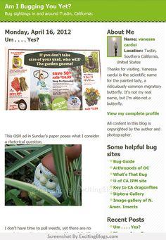 Vanessa Cardui, Gardening Blogs, Gnome Garden, Southern California