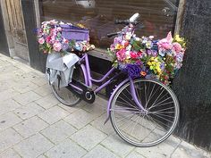 purple bike and summer flowers