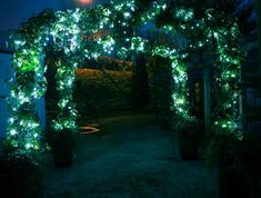 Add blinking OR still light LEDs to an arch for a night time wedding. So Midsummer Night's Dream!