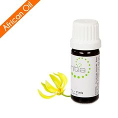 Escentia Ylang Ylang Complete (Cananga odorata) Essential Oil