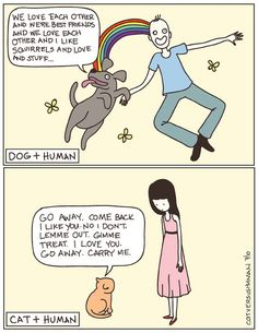 lol very true and why I love cats