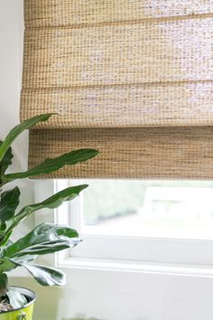 The perfect woodweave blinds - Cottonwood-woodweave-bamboo-blinds - Woven Blinds, Bamboo Blinds, Woven Shades, Bamboo Shades, House Blinds, Blinds For Windows, Shades For Windows, Cottage Blinds, Wooden Window Blinds