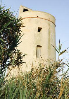 La Torre de El Palmar