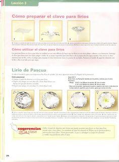 Curso 3 - Wilton - Lourdes Perez - Álbumes web de Picasa