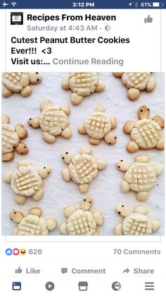 No cookie cutter needed for these peanut butter turtle cookies. Turtle Cookies, Cupcake Recipes, Cookie Recipes, Snack Recipes, Snacks Ideas, Keto Snacks, Yummy Snacks, Delicious Recipes, Baking Recipes