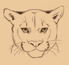 Puma zeichnen - Anleitung-dekoking-com (Cool Sketches)