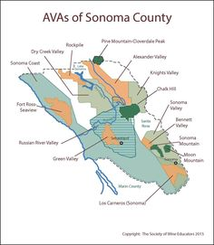 us wine california region essay We have been reading and learning about the four regions of california (the desert, mountain, central valley, and the coast) information for the four regions can be.