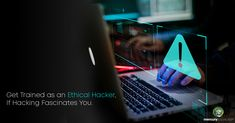 Best ethical hacking course in mercury solutions Online Training Courses, Vulnerability, Mercury, Hacks, Tips