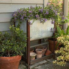 """Get creative with salvaged objects for curb appeal that lasts throughout the year! Whether you've got leftovers from a home project or you've been dumpster diving, odds and edds add much touted """"structure"""" to any yard! http://www.bhg.com/gardening/landscaping-projects/landscape-basics/budget-landscaping/?socsrc=bhgpin050615salvagedplantcontainers&page=1"""