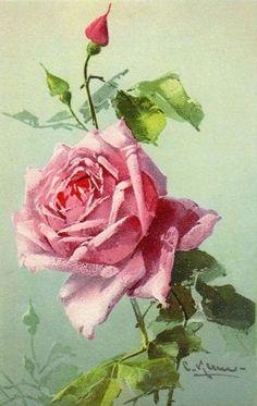 Catharina Klein.цветы-3. Комментарии : LiveInternet - Российский Сервис Онлайн-Дневников