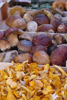 Profumatissimi funghi!