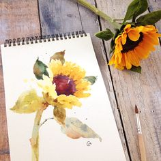 Watercolor sketchbook More