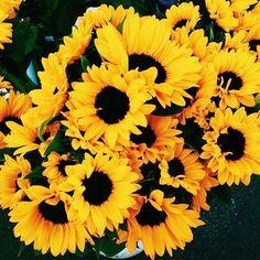 ✨ #flowers #mondays