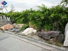 Landscaping Stein