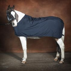 Stop rubbing - Horse rugs - Horse wither rub prevention. Prevent rubbing  with rugs from