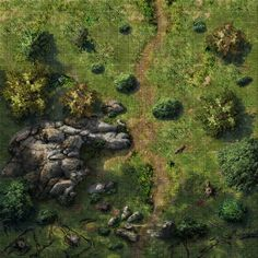 battlemap-route (foret)