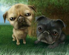 Pug buds