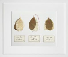 Hand Made Little Owl Feathers  Original Fine by TheFabledObject, €95.00