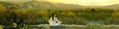 Award-Winning Destination Health Resorts & Luxury Spas - Canyon Ranch