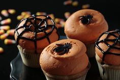 Halloween Cupcakes by Georgetown Cupcake. Perfection.