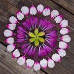 a mandala from natural materials such as petals, stones etc.
