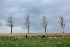Rowing in the polder, where the road is lower then the water!