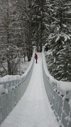 Walking in the winter wonderland! by elenavazquezm