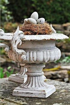 nest with eggs atop an urn