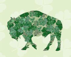 St Patricks Day Buffalo  Shamrock Buffalo by SilentMyloStudio