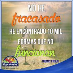"""#FraseDelDía #Motivación """"No he fracasado, he encontrado 10 mil formas que no funcionan"""""""