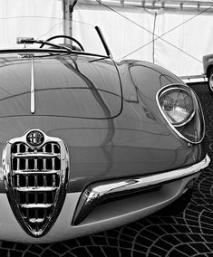 specialcar:  Alfa Romeo
