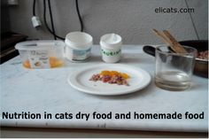 Nutrition in cats dry food and homemade food #NutritionInCatsDryFoodAndHomemadeFood http://elicats.it/nutrition-in-cats-dry-food-and-homemade-food/ Understanding the nutritional needs of the cat - do we confidently rely on pet food, on croquettes and various cans always more appetizing?   Nutrition in cats dry food and homemade food Some personal considerations about feline nutrition! Without doubt the best choice, if we know the ...