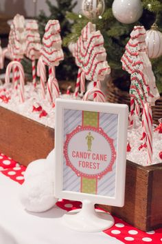 Elf Decorations, Elf Christmas Decorations, Christmas Party Ideas For Teens, Christmas Movie Night, Adult Christmas Party, Christmas Birthday Party, Christmas Party Themes, Family Christmas, Christmas Traditions
