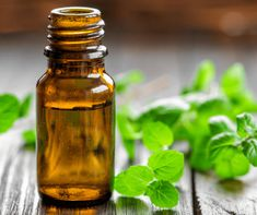 Peppermint oil has so many uses! If you are going to use even just one essential oil, peppermint should be the one. Find out how you can use it from getting rid of headaches to keep bugs away!!! Essential Oils | Peppermint Oil | Homeopathic | Headaches | Stomach Aches | Natural | how to use peppermint oil | uses for peppermint oil #peppermintoil #essentialoil #homeopathic #lifehacks Peppermint Oil For Ants, Peppermint Tea Benefits, Essential Oils For Breathing, Essential Oils For Headaches, Aloe Vera Uses, Getting Rid Of Headaches, Perfume, Pest Control, Harvest
