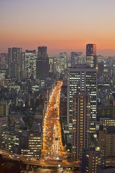 Metropolis - Tokyo, Japan