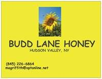 """The Fall 2013 harvest, for BUDD LANE HONEY, was lovely.  It is what I call a """"champagne"""" kind of honey - light, with suggestions of spring/summer flowers.  I used this honey to create guest favors for a New York City Ballet couple married in Millbrook, NY, 2014."""