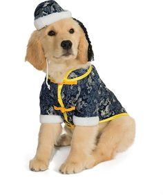 Rubie's Pet Costume, Large, Asian Dog >>> Check this awesome image  : Dog Apparel and Accessories
