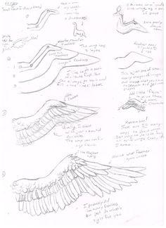 Wing Tutorial (How I draw them) by jackofalltrades0097.deviantart.com on @DeviantArt