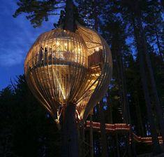 Wooden Balloon Home