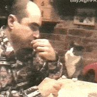 Cat and his deaf human - 9GAG