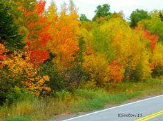 Autumn in beautiful Nova Scotia