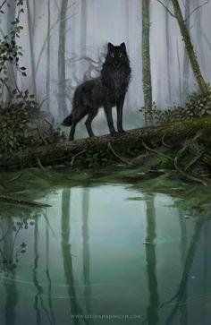 "Leesha Hannigan on ""a little Dragon Age fan art for my fellow Solavellans"" Fantasy Wolf, Dark Fantasy Art, Fantasy Artwork, Mythical Creatures Art, Magical Creatures, Shadow Wolf, Wolf Artwork, Fantasy Kunst, Werewolf Art"