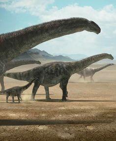 *Argentinosaurus. Art by Miguel Ángel Amorín Fernández