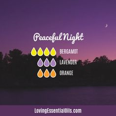 Bergamot Diffuser Blends - Relax and Uplift Your Senses! Peaceful Diffuser blend by Loving Essential Oils Sleeping Essential Oil Blends, Essential Oils For Sleep, Essential Oil Diffuser Blends, Orange Essential Oil, Doterra Essential Oils, Bergamot Essential Oil Uses, Essential Oil Combinations, Stress, Perfume