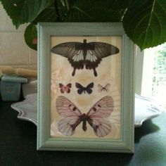 Eau De Nil repainted frame with die cut butterflies on a tea stained background.