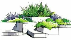 garden drawing We brings you spectacular examples of garden plans from homes around the world. -- Learn more by visiting the image link. Landscape Architecture Drawing, Landscape Model, Landscape Sketch, Landscape Design Plans, Garden Design Plans, Landscape Drawings, Urban Landscape, Computer Architecture, Architecture Plan